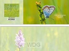 Panoramawenskaart vlinder Gods belofte