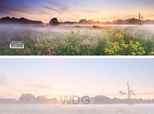Panoramawenskaart zt zomermorgen