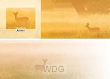 Panoramawenskaart ree in het gouden uur