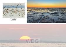 Panoramawenskaart wijs met de waddenzee