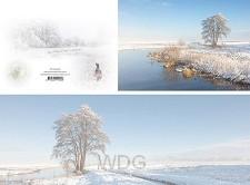 Panoramawenskaart winterbeek