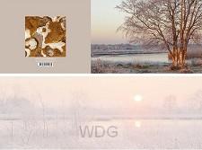 Panoramawenskaart winterlicht en ijsstru