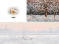 Panoramawenskaart wintermorgen
