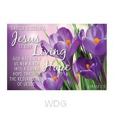 PIO Jesus is our living hope set10