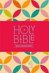 Compact Bible -red/yellow