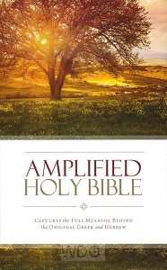 Amplified Holy Bible - Thinline