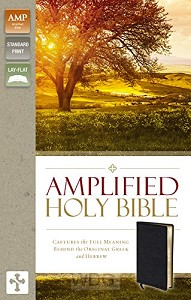 Amplified Thinline Holy Bible