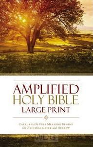 Amplified Holy Bible - Thinline - LP