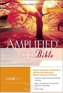 Amplifield Bible