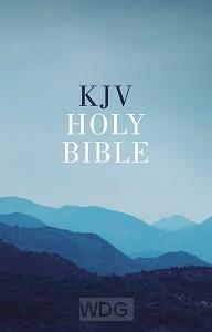 Outreach Bible - Blue