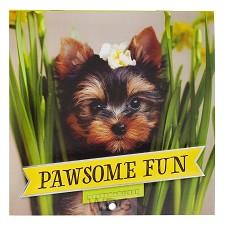 Pawsome Fun