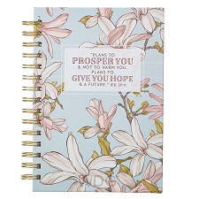 Plans to Prosper You - Jeremiah 29:11