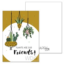 Plants are our friends!