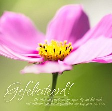 Kaart m env gefeliciteerd bloem