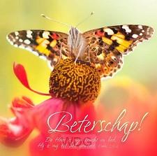 Kaart m env beterschap vlinder