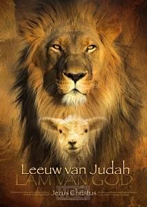 Poster 50x70 leeuw van judah