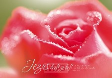 Poster A3 Jezus heeft je lief