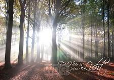 Poster A3 de Heer is jouw licht