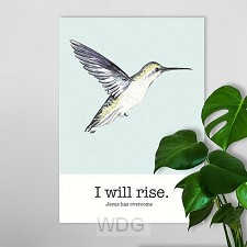 Poster a4 I will rise