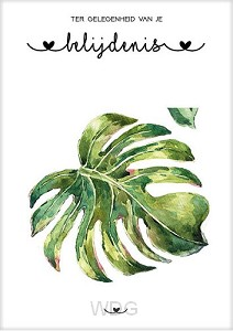 Kaart belijdenis groen blad