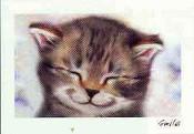 Smile cat (6er Postakartenset)