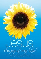 Poster a2 let My joy and peace be yours