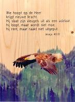 Adelaar Jesaja 40:31 : Wandbord - 27,8 x 40 cm