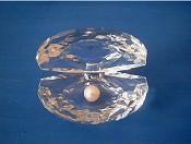 Parel in Gods hand : Schelp kristal middel 3x5cm