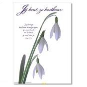 Poster 'Je bent zo kostbaar' [ 3 stuks ] : christelijke miniposter