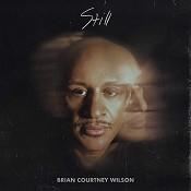 Still (CD) : Wilson, Brian Courtney