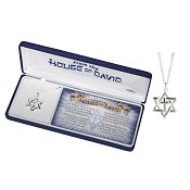 Star of David : Necklace - Silver plated
